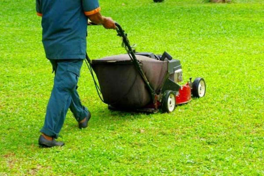 Lawn service mowing lawn after aeration