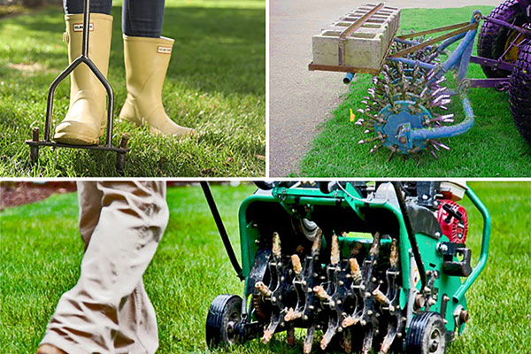 How d you aerate your lawn?
