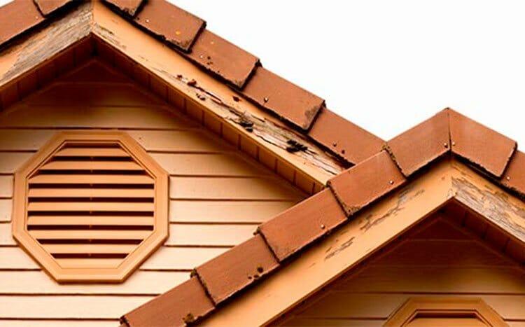 FAQ's Do termites eat Masonite siding
