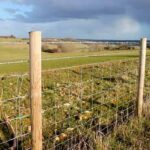 Farm fencing cost
